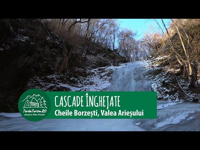 Pe gheață în Cheile Borzești