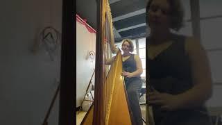 Tori Parrish: La Fille aux Cheveux de Lin (Debussy) transcribed for harp by Salzedo