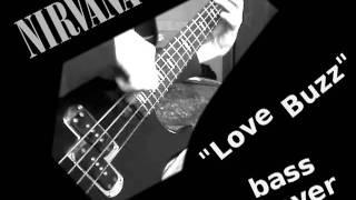 Nirvana - Love Buzz _ neck bass cover