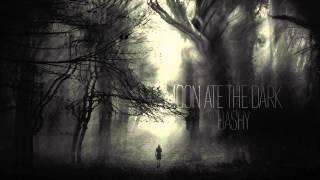 Moon Ate the Dark — Bashy