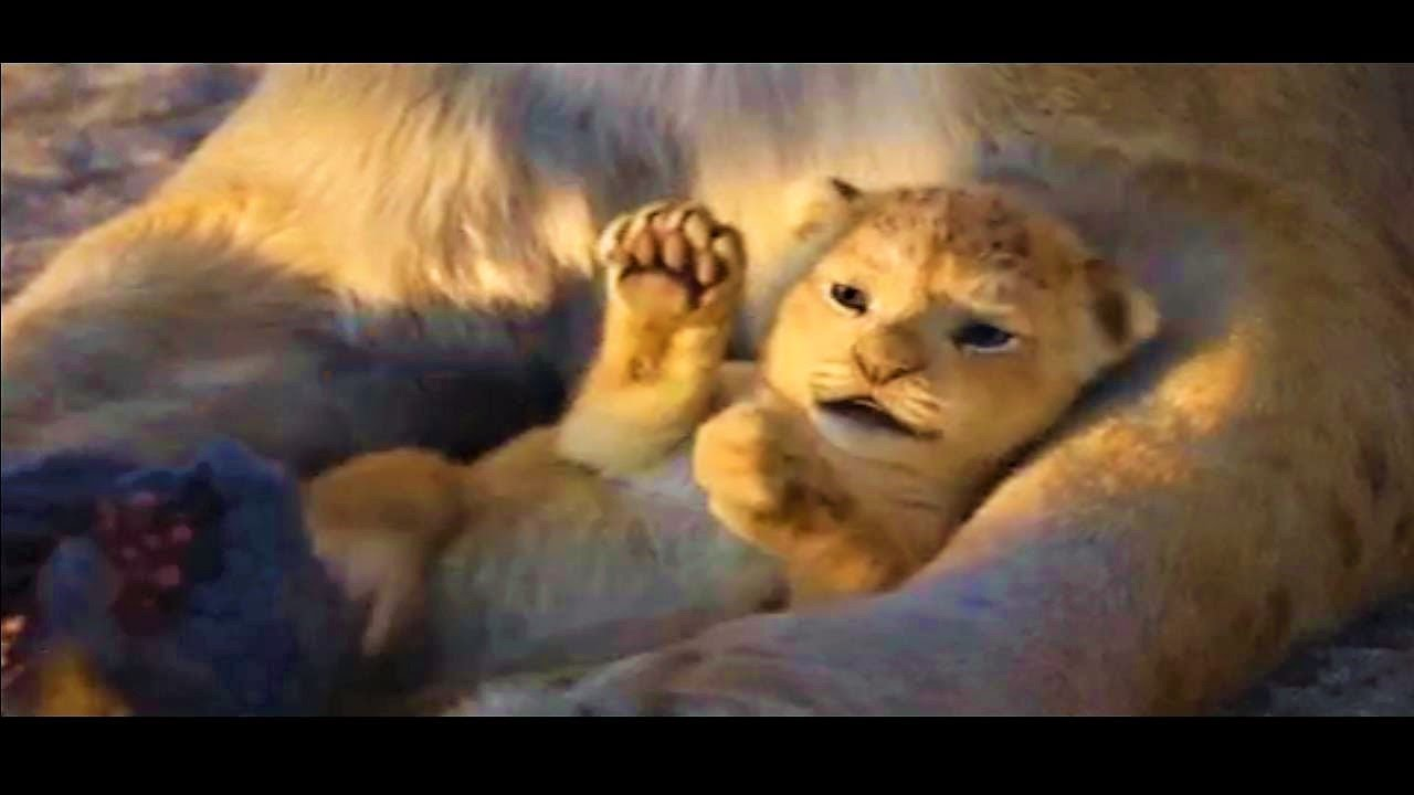 The Lion King 2019 Hd So Cute Baby Simba Lovely Moments Movie Animation 1080 Youtube