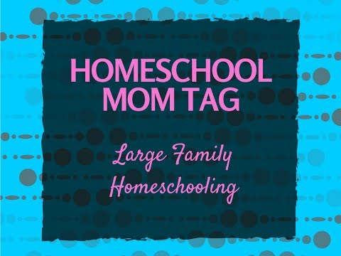 HOMESCHOOL MOM TAG - Large Family Homeschooling