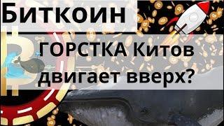 Биткоин Двигает вверх ГОРСТКА Китов думает он и $100 000 за Litecoin на Binance