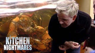 Gordon Reacts to Finding DEAD LOBSTER in the Fish Tank | Kitchen Nightmares thumbnail