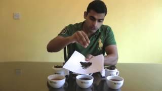 PMD Tea Buyers Club Episode #005 Pekoe