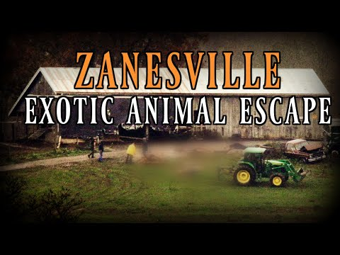Zanesville Animal Massacre  | True Crime Documentary