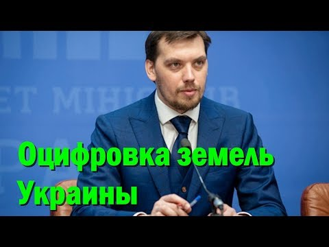 """Гончарук назвал сроки """"оцифровки"""" земель Украины"""