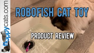 Robo Fish Cat Toy Product Review Video Blackhole Cat Littermat YouTube