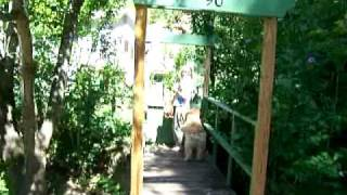 Bridge Over Stream To Dream Cottage.mov