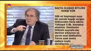 Bit İçin Kür - TRT DİYANET