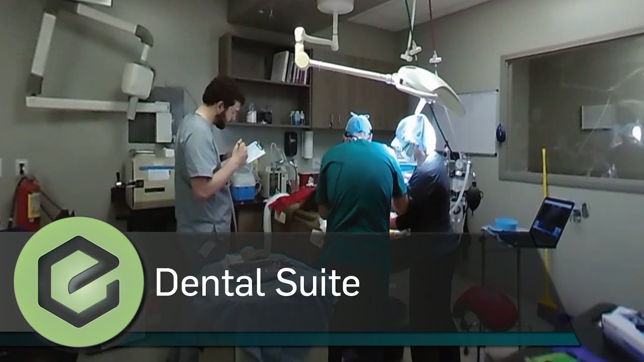 Wheat Ridge Animal Hospital 360 Tour Dental Suite Youtube
