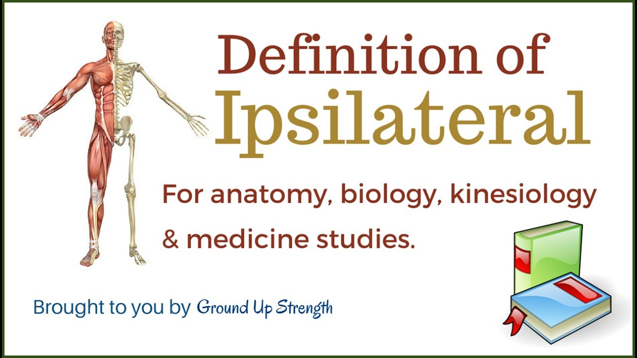 Ipsilateral Definition (Anatomy, Kinesiology, Medicine) - YouTube