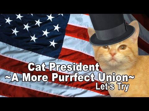 Let's Try Cat President ~A More Purrfect Union~