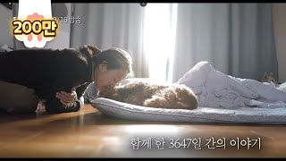 The Story Of Farewell Between Lee Hyo-Ri And Her Dog Soonshim