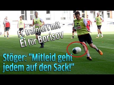 1. FC Köln vor Europa League Spiel gegen BATE Borisov: Trainer Peter Stöger will kein Mitleid