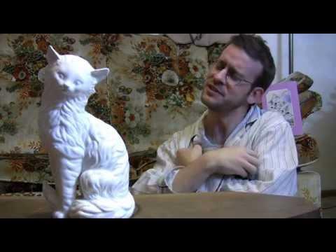 Cat Classics - Infomercial