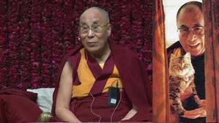 Далай-лама о любимой кошке