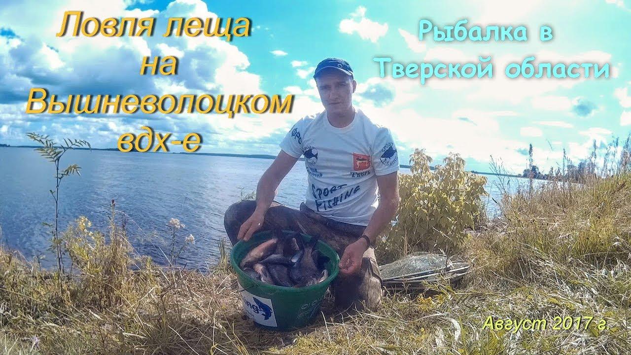 ловля леща на фидер на дамбе видео