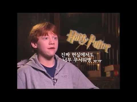 론 스네이프씨한테 현실장난친 후기 (해리포터)