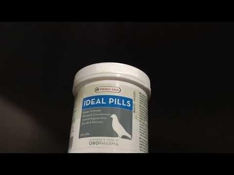 ยาพิราบ ideal pill