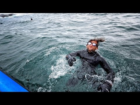 Surfing With GREAT WHITE SHARKS At DUNGEONS SOUTH AFRICA