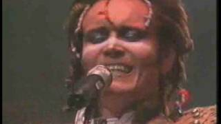 Adam & The Ants, Killer in the home, live