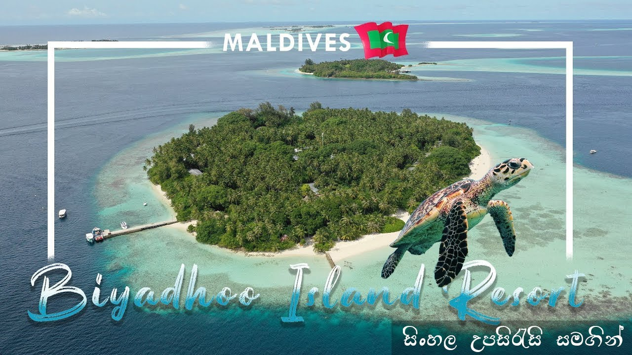 Maldives Biyadhoo Island Resort Review 2019 Travel Vlog