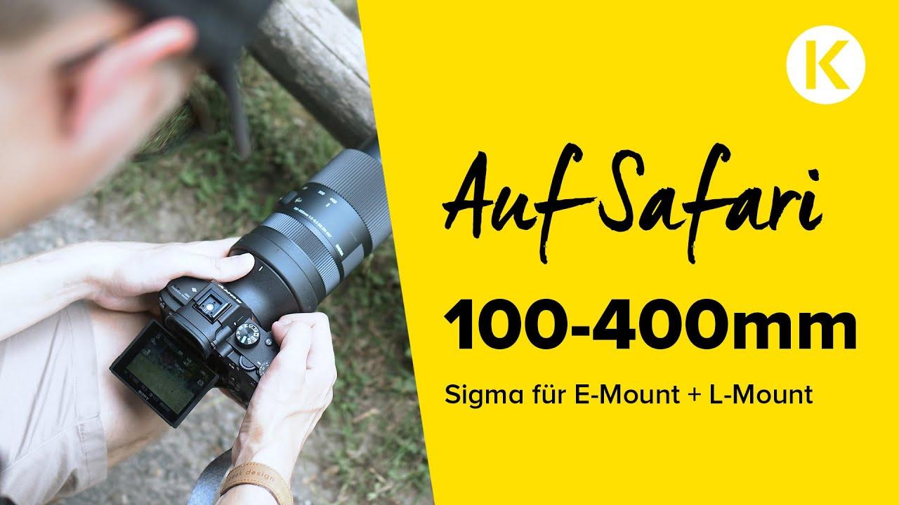 Ultra-Tele-Zoom Sigma 100-400mm | Auf Safari 🦌 | Foto Koch Hands-On