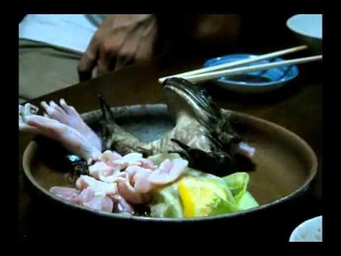 Rùng mình xem nhà hàng phục vụ ếch sống-Yume TTNV