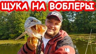 Ловля щуки на воблеры. Рыбалка на малой реке. Твичинг