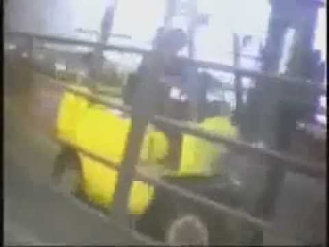 Crimes of Hallmark Westland Meat Company (Downer cows abuse)
