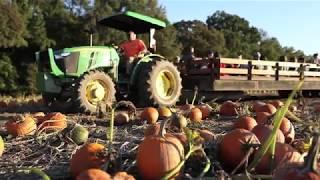 Ashland Berry Farm