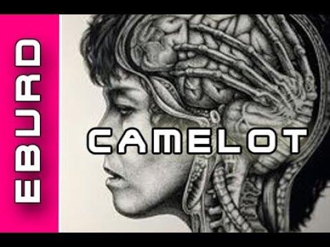 Project Camelot Ufo Kontaktler Jim Sparks & Alien Entführung auf Überwachungskamera gefilmt