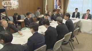 自民で消費増税対策を議論 ポイント還元策に疑問(18/12/19)