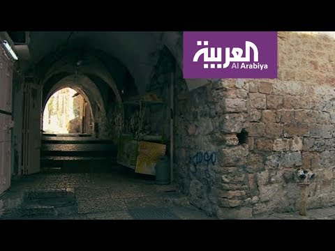 حكاية شارع | شارع المئذنة الحمراء يقطع حارة السعدية تحت قناطر حجرية في القدس القديمة  - نشر قبل 4 ساعة