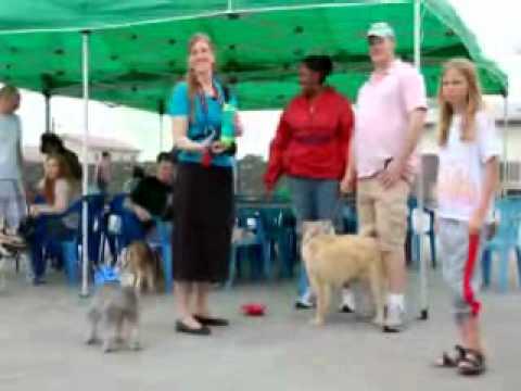 Camp Humphreys Pet Fest - Korea - Army MWR - 110706