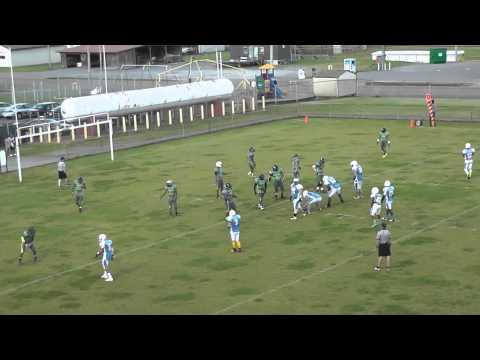 Cleveland Storm vs Tennessee Cobras - 5/2/2015 - 22 minutes, EARLY STOPPAGE