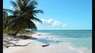 Dancing In De Caribbean MegaMix Part 2 (Kardinal Offishall, Farmer Nappy, Shaggy, Sean Paul...)