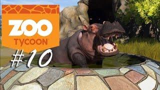 || Zoo Tycoon - Wypuszczamy zwierzęta?! ||