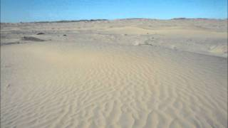 Thomas  In den Sand gesetzt.wmv
