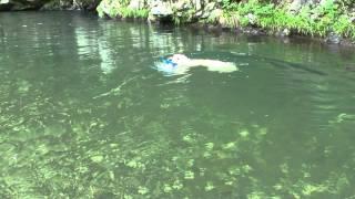川を少しだけ上ると流れが穏やかで、泳ぐ事も出来ました.