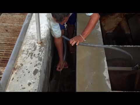 Agua del Chuno restablece producción de agua