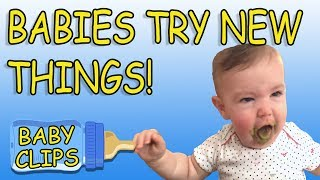 Babies Trying  Things For The First Time Compilation | Funny Moments