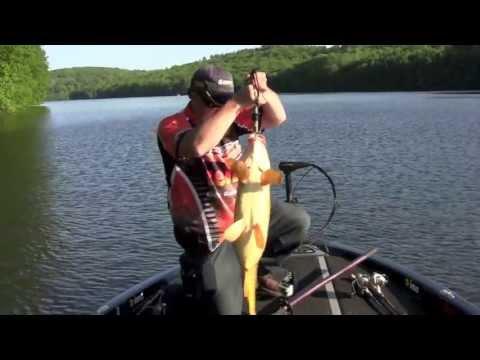 Carp Fishing In CT On Lake Lillinonah