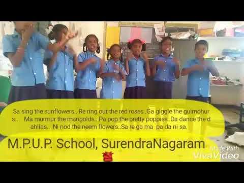 Karadi path Sa sing the sunflowers