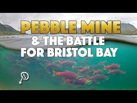 What Is The Pebble Mine?