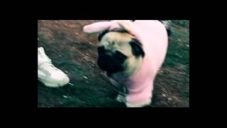 Kaskata - freestyle NEFTOHIMIK FEN VIDEO