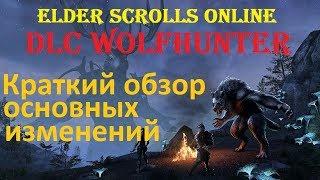 видео The Elder Scrolls Online обзор подробностей