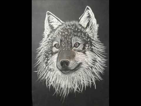Disegno lupo fra youtube for Lupo disegno a matita