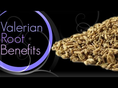 ♥ Valerian Root Benefits ♥